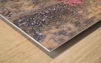 22E87D39 0480 45DB AB7D 1F5C4D7E44D6 Wood print