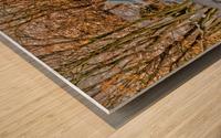 Canalside Living Wood print