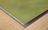 Abstract Art Bokeh - greens and yellow Wood print