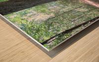 Landscape (166) Wood print