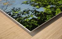 Landscape (181) Wood print