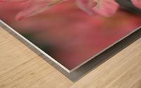 Pink Flower Photograph Wood print