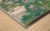 Bryant Park New York Wood print