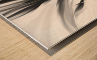 Hazy Stem Left  Wood print