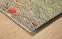 duck (3) Wood print
