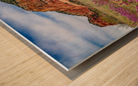 Clover Fields in Sedona Wood print