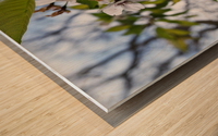 Soft-Focus Flower Scene Wood print