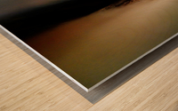 Abstract Macro Nature Photography 85 Wood print