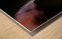Abstract Macro Nature Photography 13 Wood print