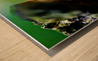 Abstract Macro Nature Photography 08 Wood print