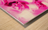 Roses with Vanilla Ice Cream - pink white red large abstract swirl wall art Wood print