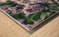 Lilacs in Spring Wood print
