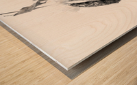 End of the season Wood print