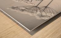 In Black & White Wood print