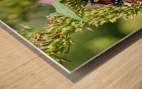 Slim Pickings Wood print