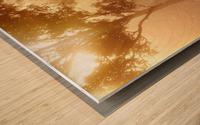 hirsch wild antler nature forest Wood print