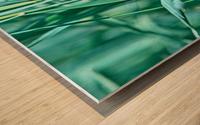 Resting Wood print