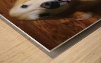 Happy Golden Wood print