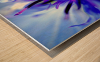 Abstract Pop Color Flower Photography 01 Wood print