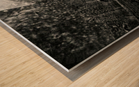 Web of Pearls Wood print