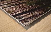 20190802_182317 Wood print