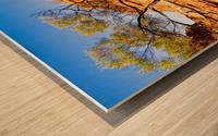 Twisted Tree - Kings Canyon Wood print