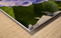 IMGP4936 Wood print