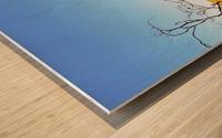 Landscape - Devils Marbles Wood print