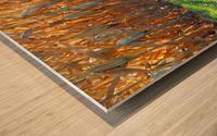 Cornstalk Shadows Wood print