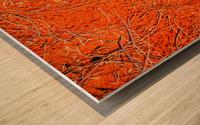 Seeds of the Desert Wood print