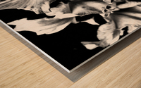 Black Divine  Impression sur bois