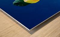 IMG_20190309_144933466_1569620406.3282 Wood print