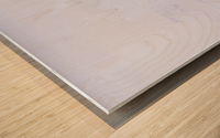 _TE89656 Wood print