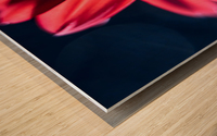 Red 1 Wood print