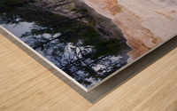 Yellowstone Lower Terrace Wood print