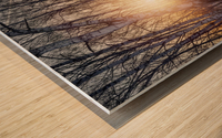 DSC_0351 10    1 Wood print