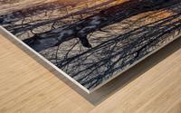 DSC_0347 10     1 Wood print