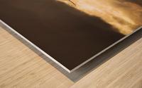 Seeing Double Wood print
