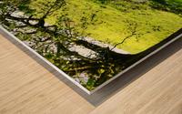 Finding Shade - Northern Ireland 2 Wood print