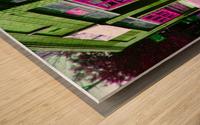 Atlanta Street Scene -- Fuchsia & Lime Wood print