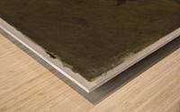 L ane Wood print