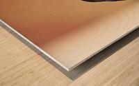 Pause soleil Wood print