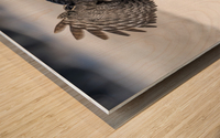 Keep Your Eye On The Target Wood print