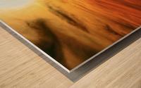 IMG_3476_7_8_tonemapped Wood print