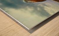 Bluebird in Sun Wood print