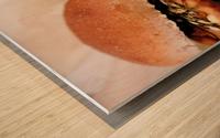 Its Vegan Wood print