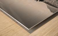 Black Tie Bonanza Wood print