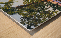 Canoe Beach Wood print
