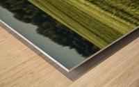 Wheat Fields Wood print
