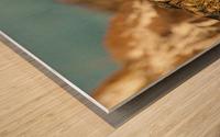 AdriaanPrinsloo 8074 Wood print